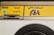 woof_to_wash2