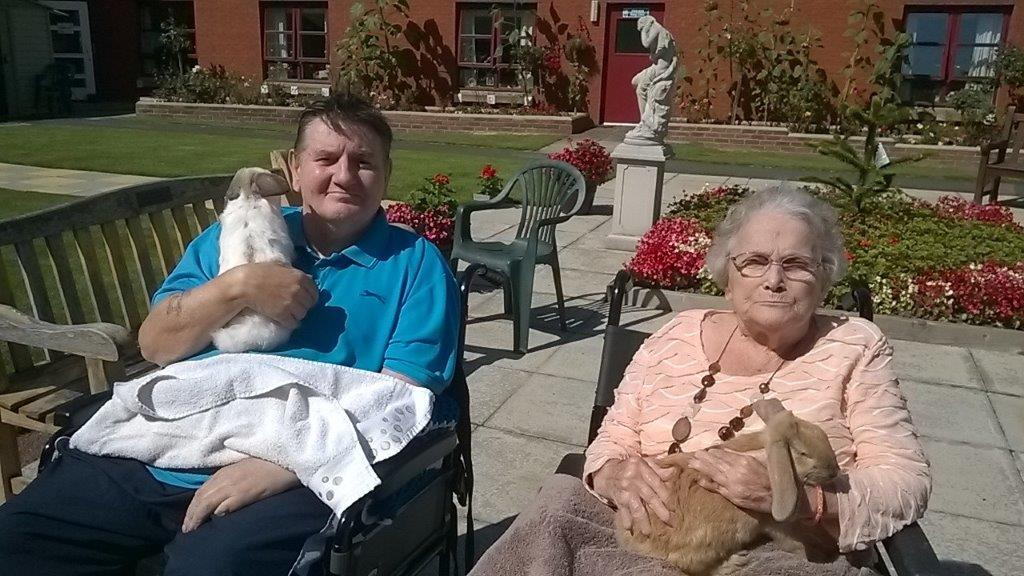 claremont-care-home-bupa-rabbits