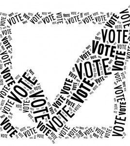 vote1-e1351675040992-268x300